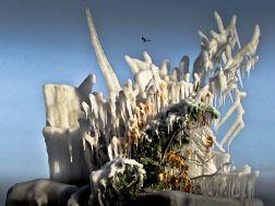 L'ATELIER DE MADMAN - PHOTOGRAPHIE - ICE AGE