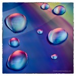 Water Drops onCD