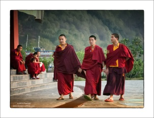 Monk Friends - Neydo Monastery Nepal
