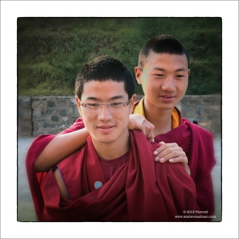 201305-MonkFriends-15