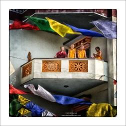Monk Friends - Neydo Monastery Nepal