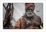 The Guru – PharpingNepal