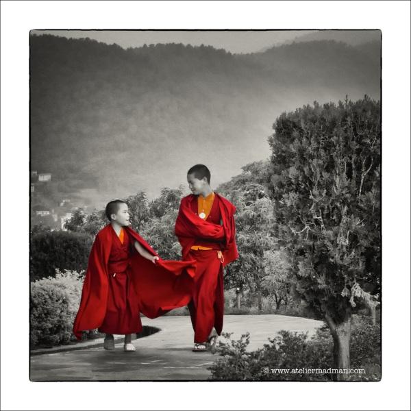 Little Monks - Neydo Monastery NepaL